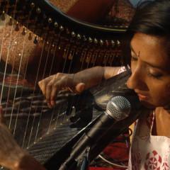 sheela bringi udaya harp